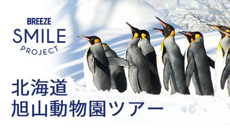 北海道旭山動物園ツアー